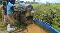 Harga gabah bisa anjlok, Bupati Karawang keberatan wacana impor beras